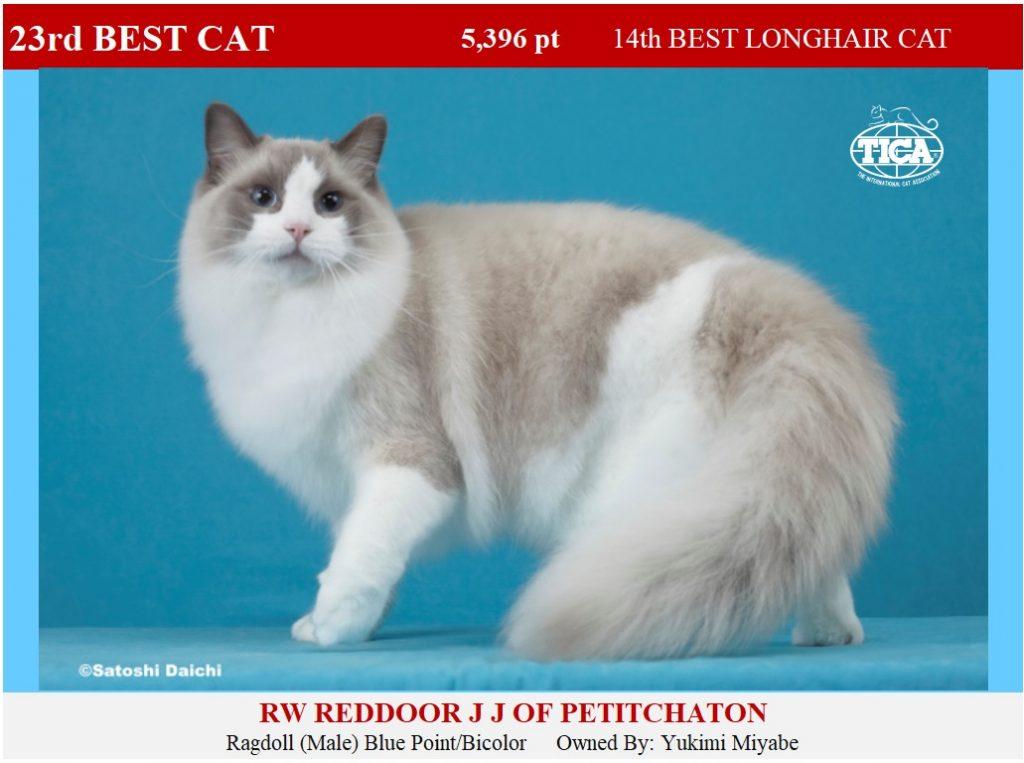 C23-HP_ Reddoor JJ of Petitchaton