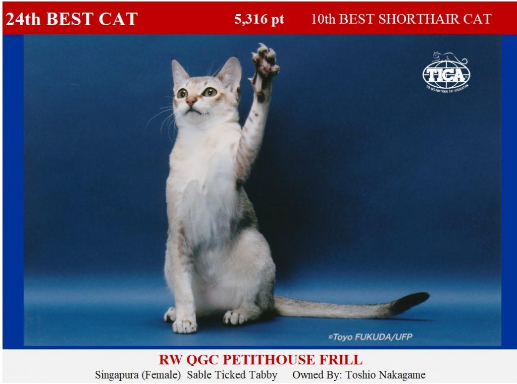 C24-HP_ Petithouse Frill