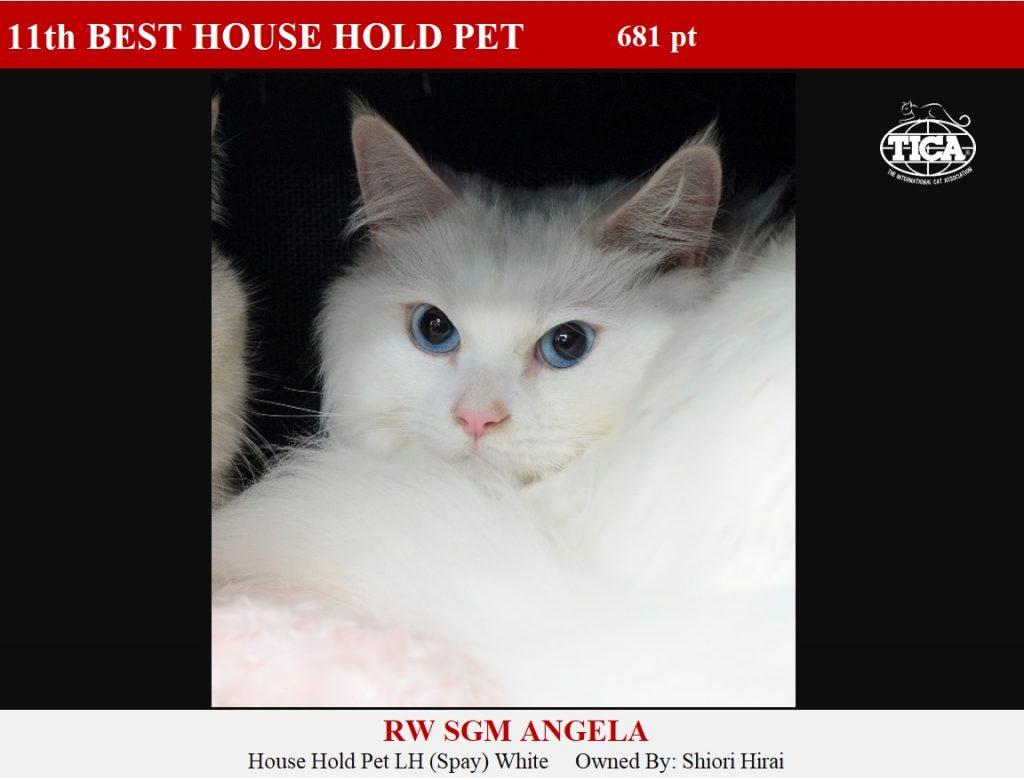 HHP11-HP_ Angela