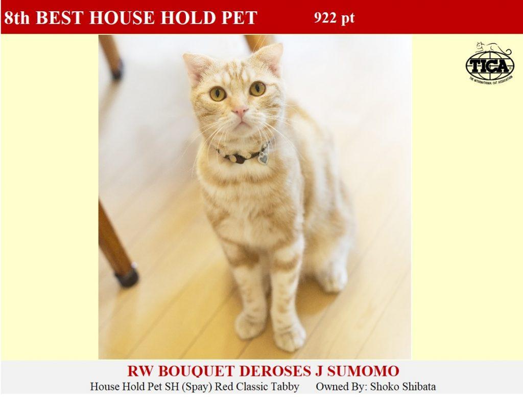 HHP8-HP_ Bouquet Deros
