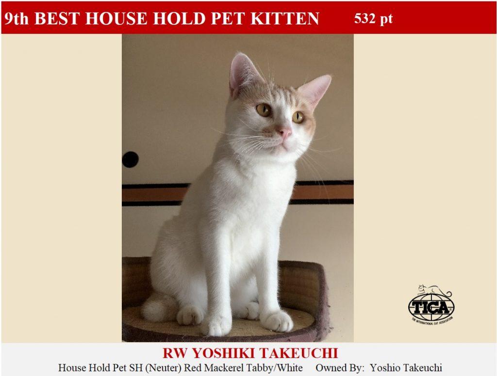 HHPK9-HP_ Yoshiki Takeuchi