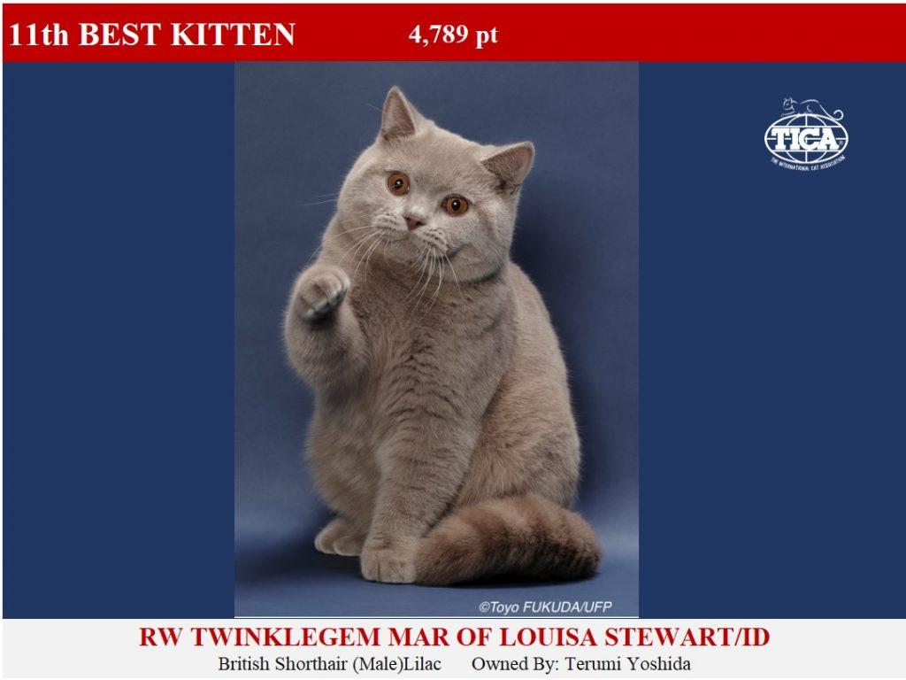 K11-HP_ Twinklegem Mar of Louisa Stewart