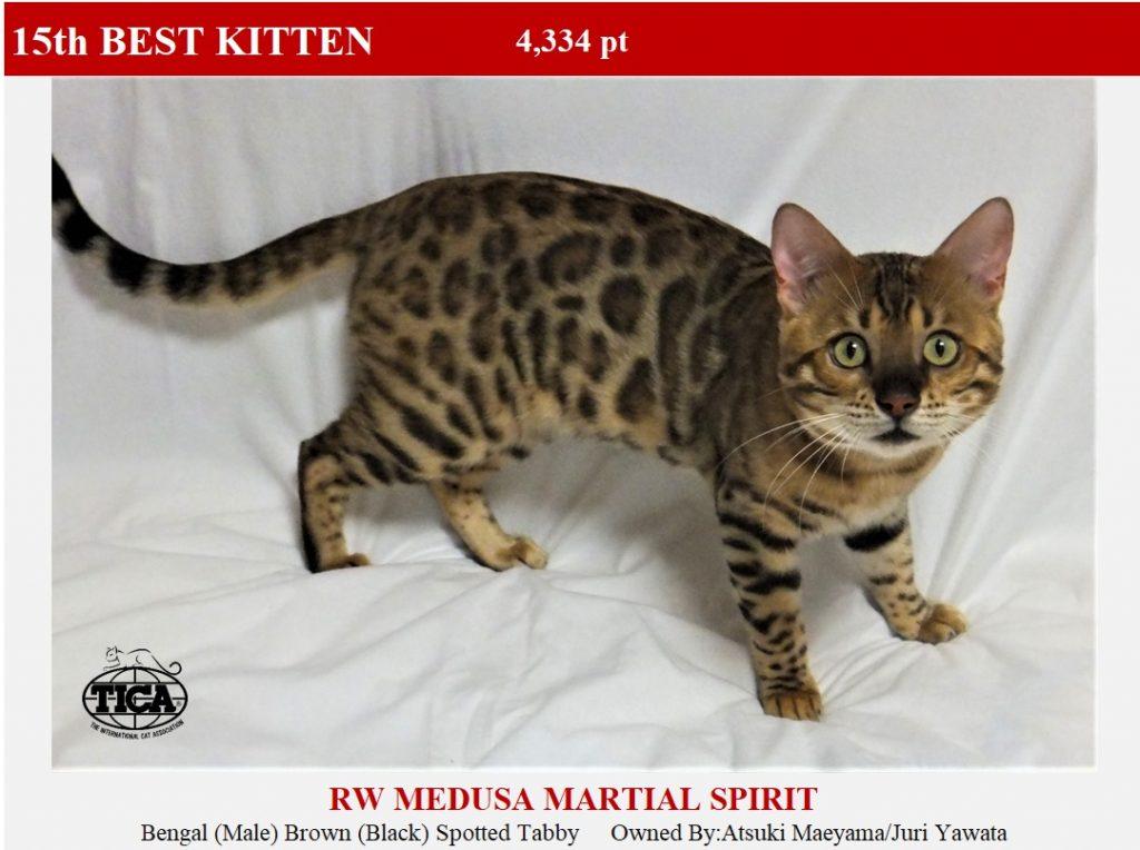 K15-HP_ Medusa Martial Spirit