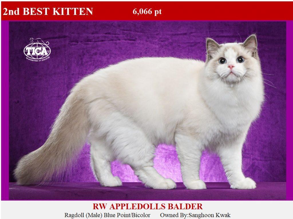 K2-HP_Appledolls Balder