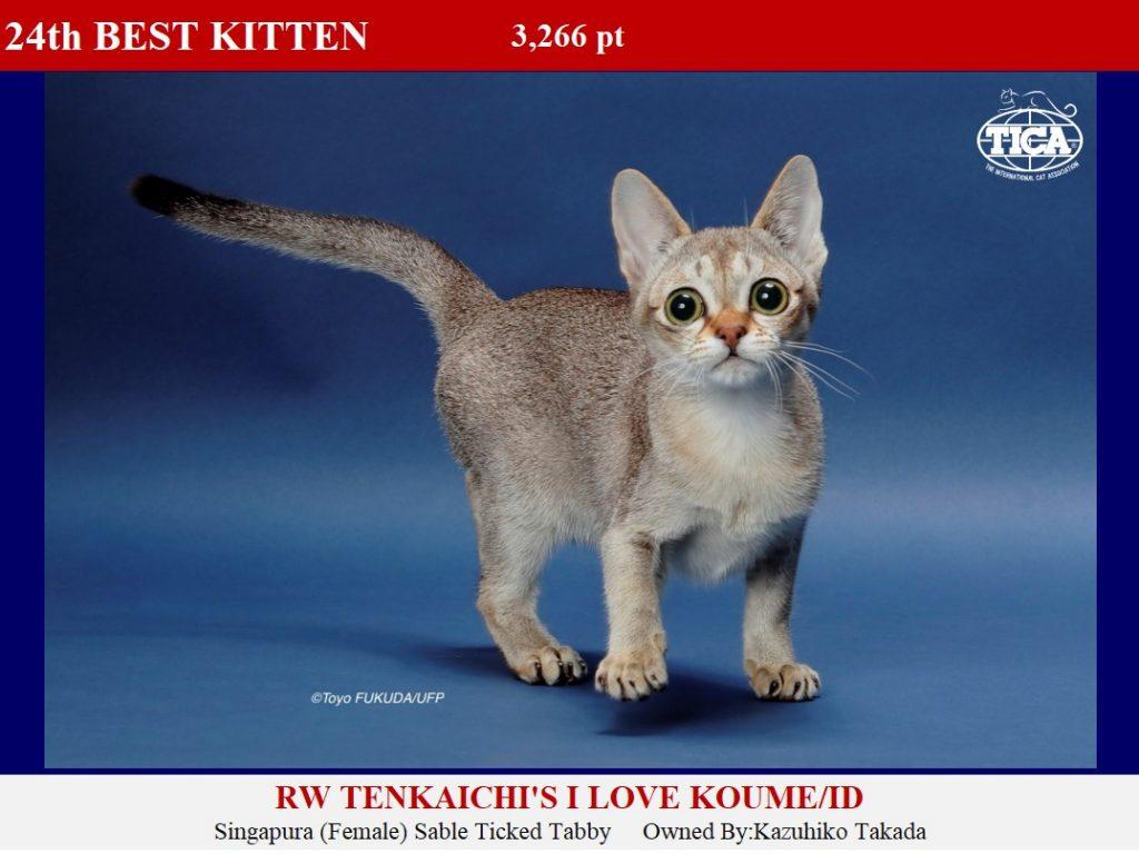 K24-HP_ Tenkaichis Love Koume