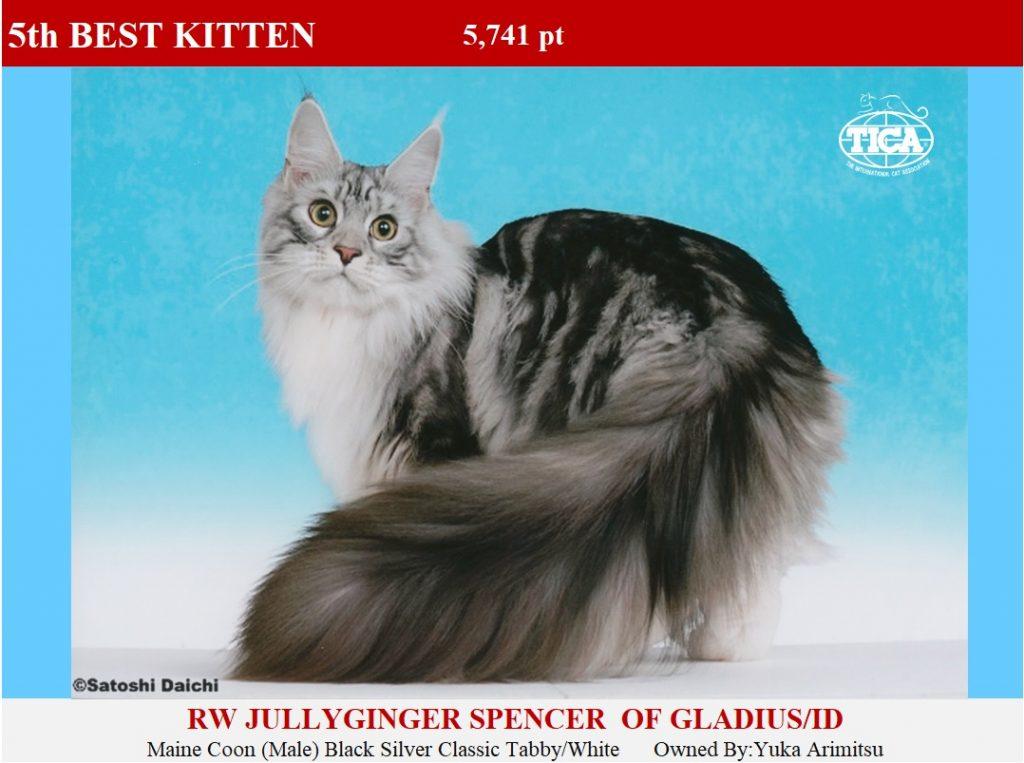 K5-HP_ Jullyginger Spencer of Gladius