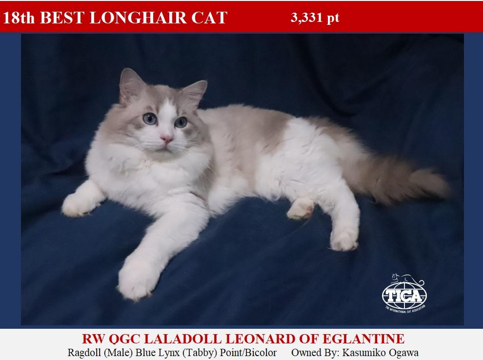 LHC18-HP_ Laladoll Leonard of Eglantine