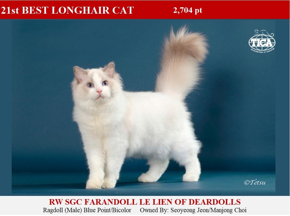 LHC21-HP_, Farandoll Le Lien of Deardolls