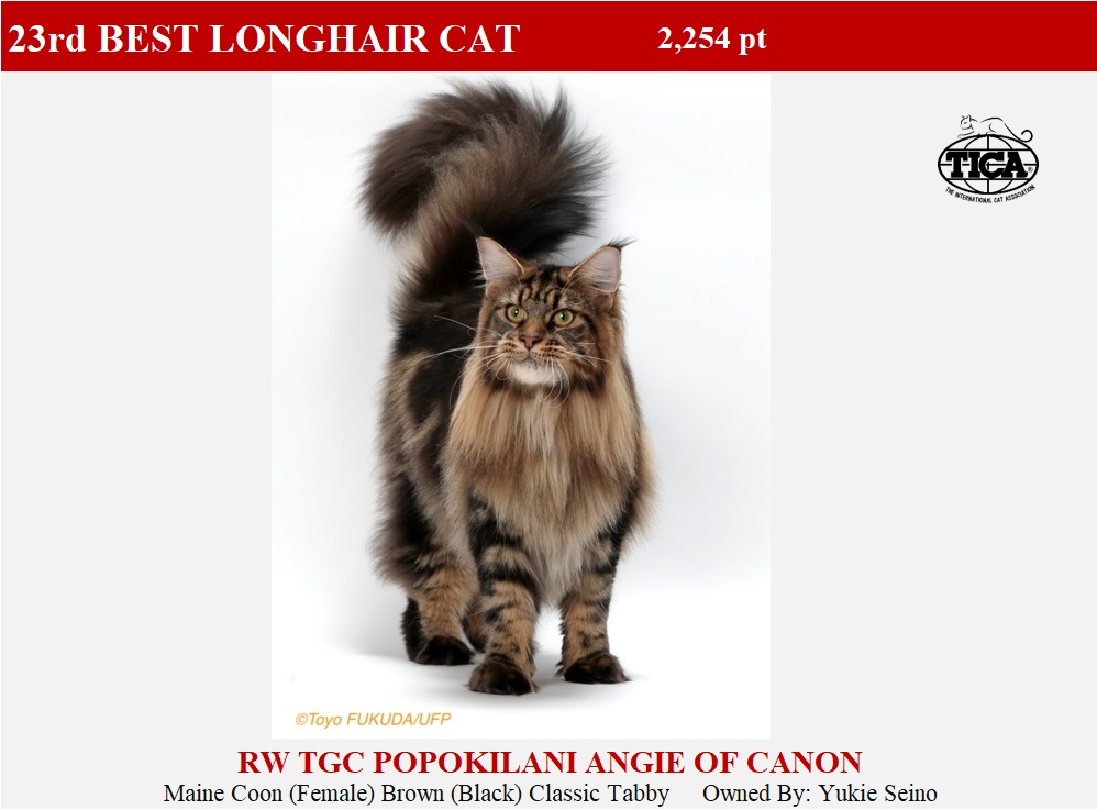 LHC23-HP_ Popokilani Angie of Canon
