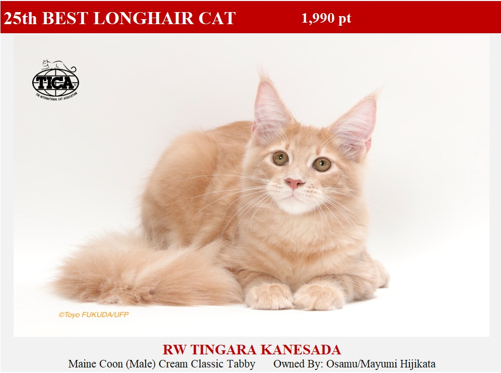 LHC25-HP_ Tingara Kanesada