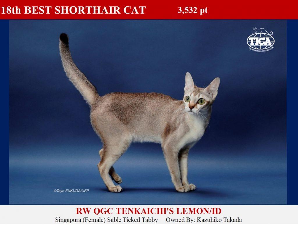 SHC18-HP_ Tenkaichis Lemon